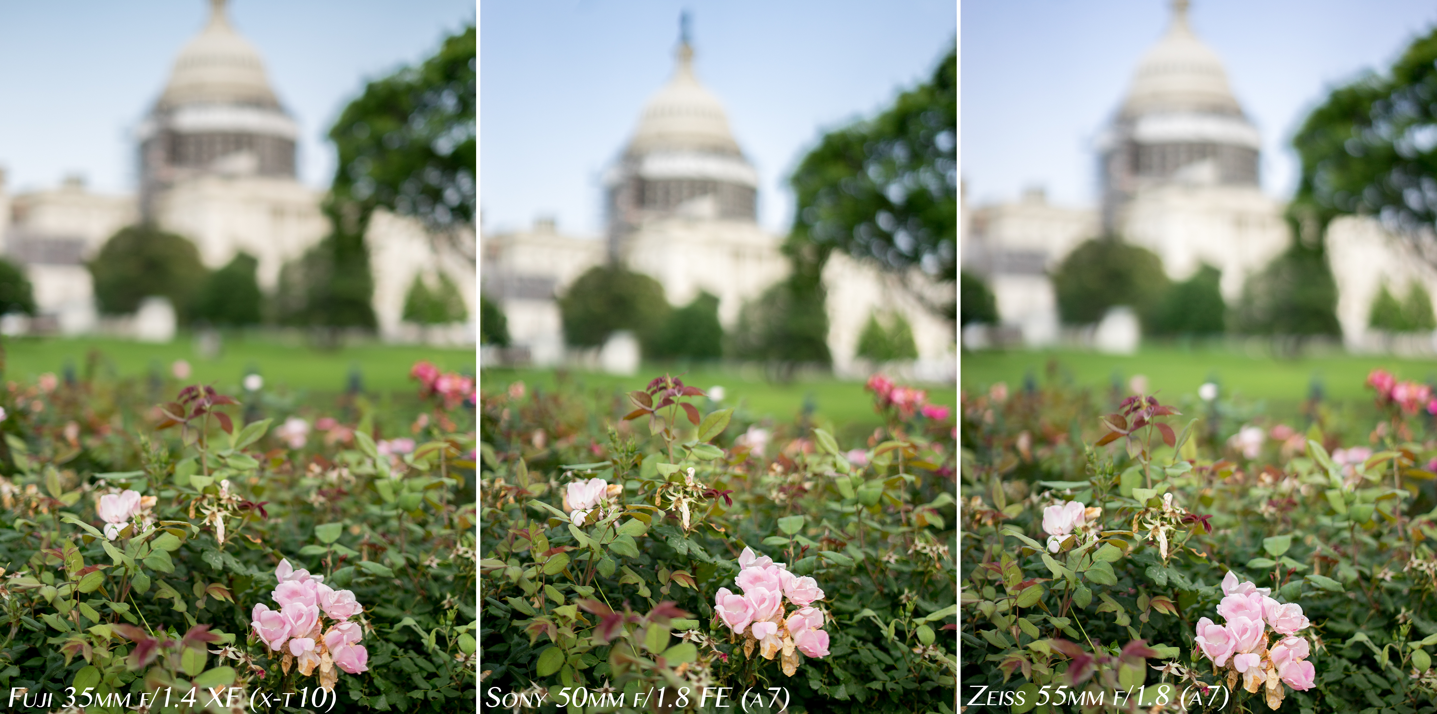 Sony 50mm F 18 Fe Vs Zeiss 55mm Photos By Johnathan Comer Sel55f18z F18 Za Sonnar T Sel 55 Nailxt10a7iv